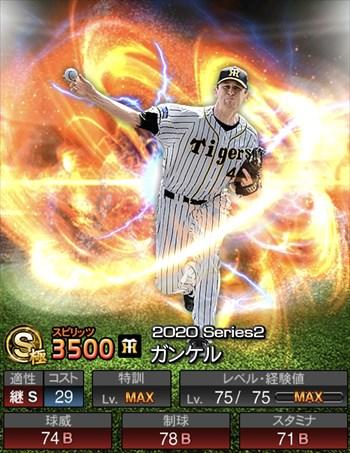 ガンケル 2020シリーズ2/S極